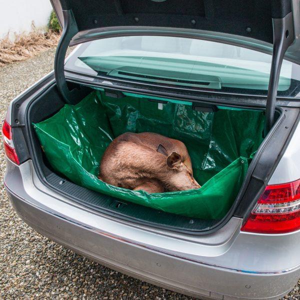 Beschermingshoes voor in de auto